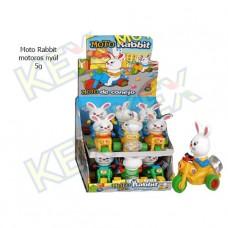 Moto Rabbit motoros nyúl 5g